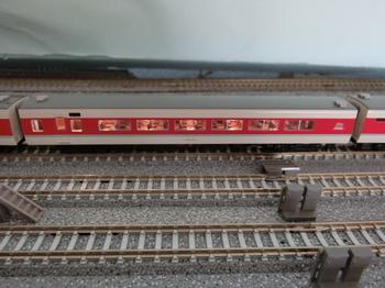 CIMG8503.JPG