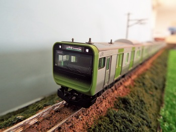 DSCF1134-1.jpg
